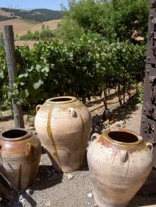 Napa Valley Winery, CA