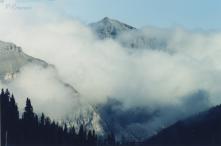 Rocky Mts., Alberta, Canada