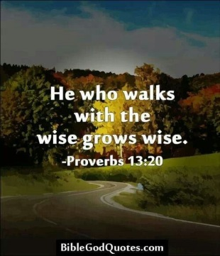 b25676f8b33bbde5ab67e98af75334c5--proverbs-bible-quotes-wise-proverbs (1)