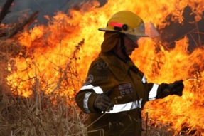stock-photo-danger-flame-fire-occupation-female-worker-hot-flames-firefighter-f2b997c1-dc56-4a03-b6f6-23ca2cadfb15